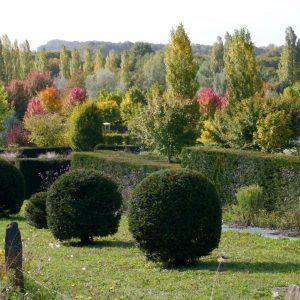 Le parc en automne 14